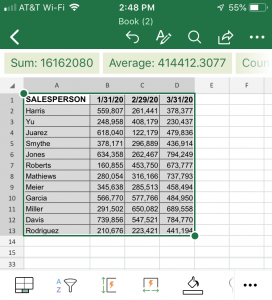 Data from Picture Converted to Excel